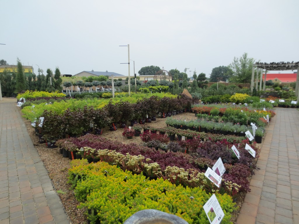 Ground Effects Garden Center